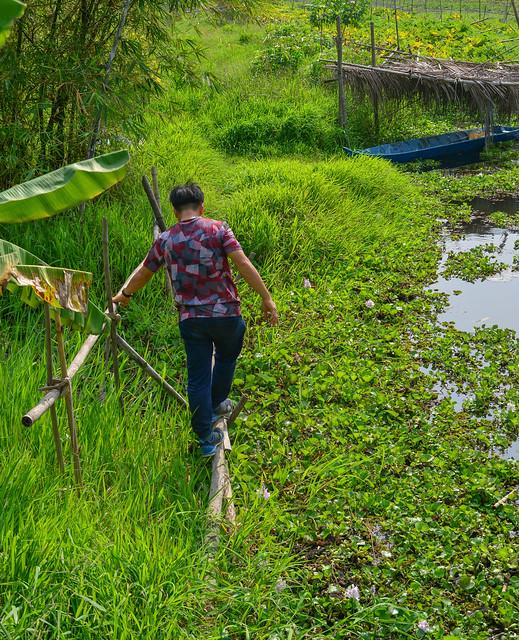 Asian man walking on dangerous bamboo bridge
