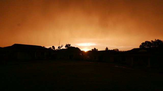 Sunset in Serenity Park