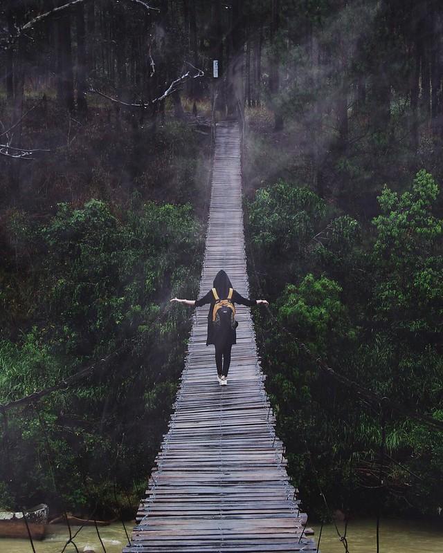 Phượt Hot - Những cây cầu dây treo giữa lòng Đà Lạt (4)