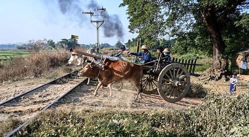 Bullock Cart and Stone train Bago Myanmar