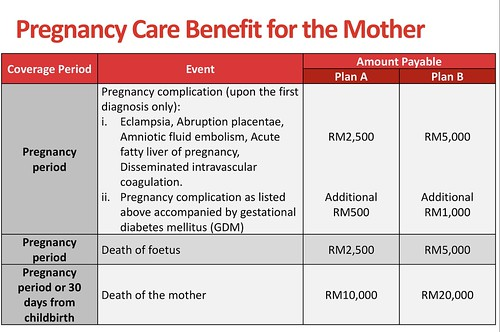 Pregnancy Care Benefit