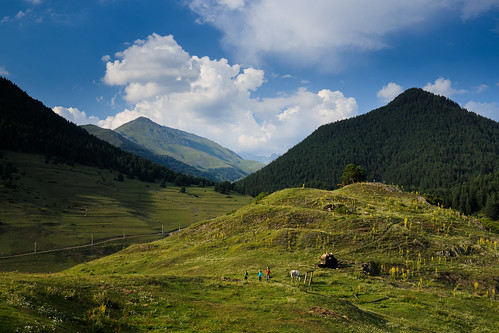 tusheti shenako kakheti georgia mountains caucasus rural hill grazing afternoon