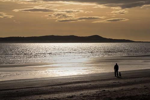 dog man beach evening sunset walk donabate fingal dublin ireland sea seascape landscape howth sand shore coast