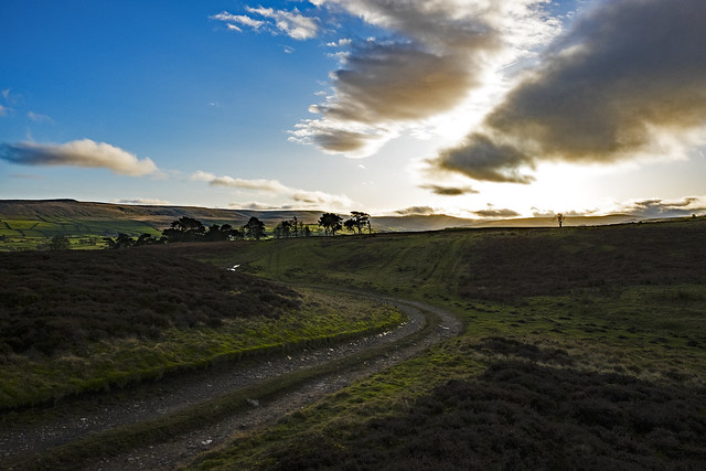 Melmerby Moor.
