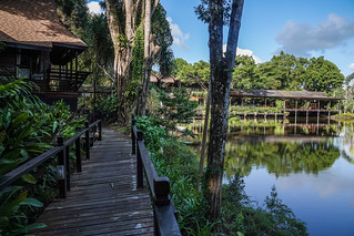 Sepilok Nature Resort | by TimoOK