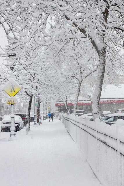 White Brady Street