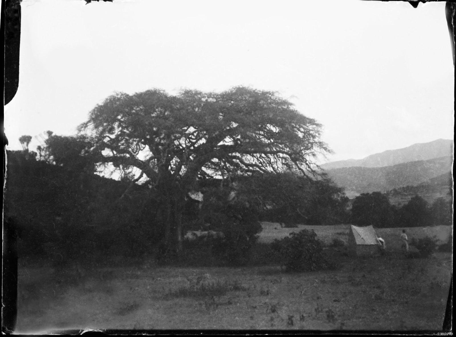 16. Место лагеря