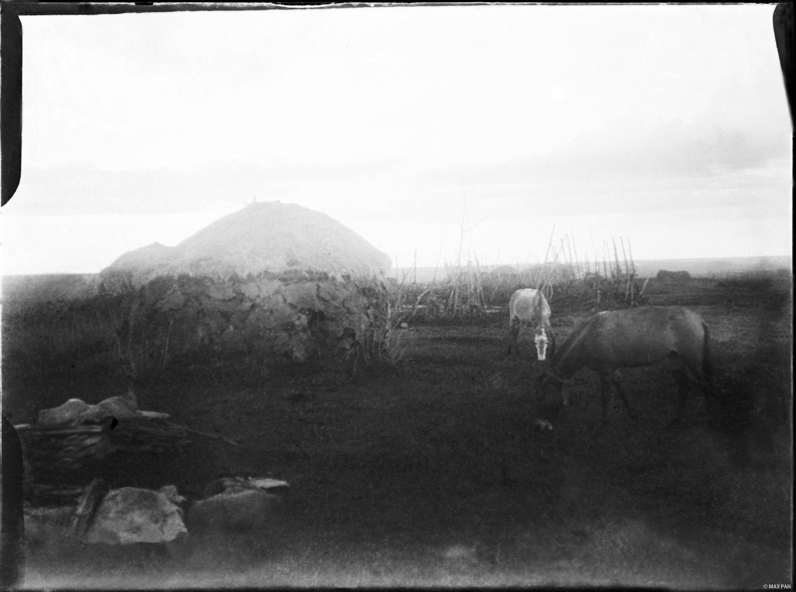 22. Общий вид оставленной деревни оромо (мулы и вещи - наши)