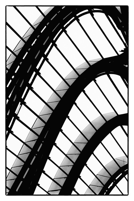 Curves & Lines