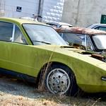Chartreuse Car