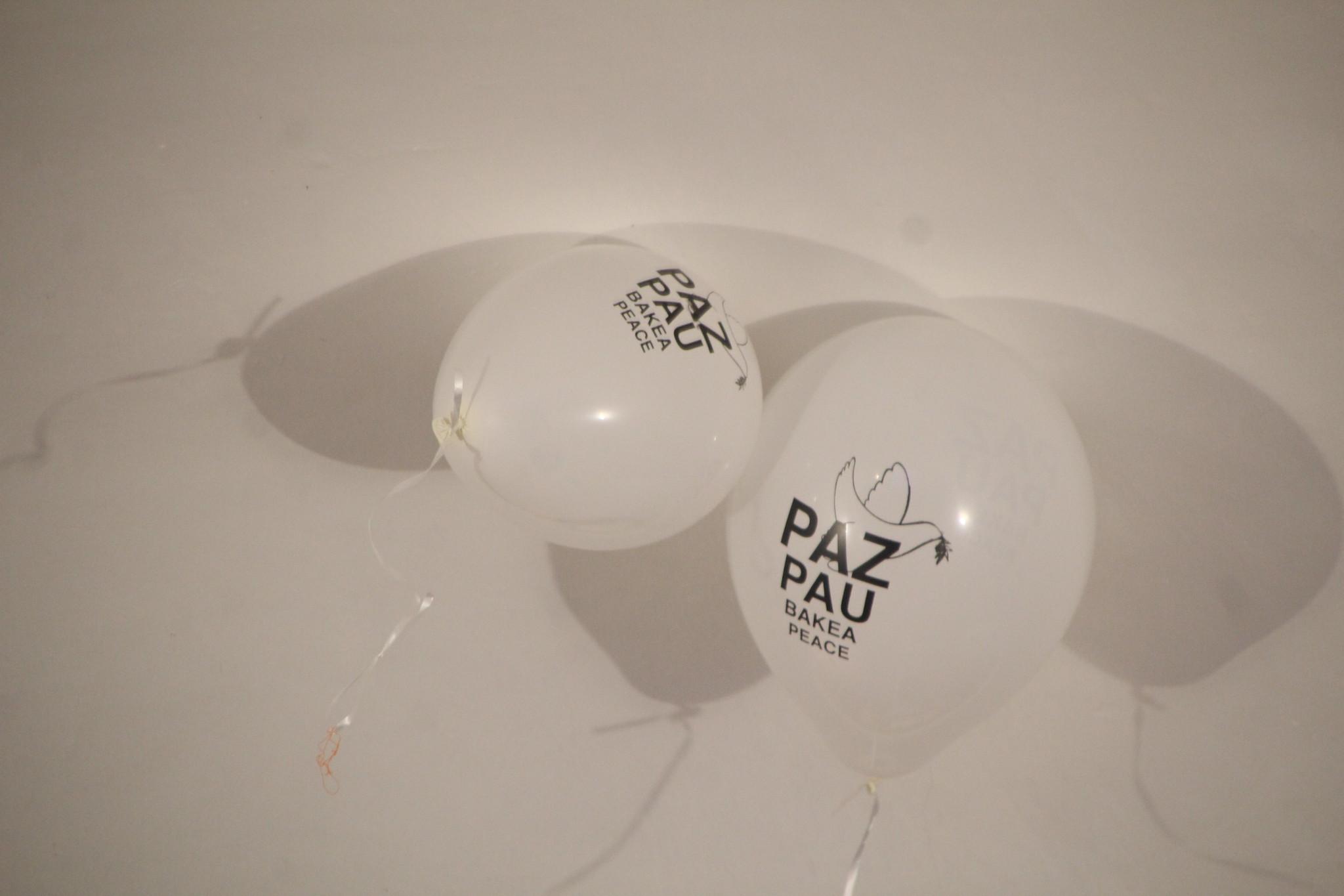 (2020-01-31) - II Manifiesto por la PAZ - Javier Romero Ripoll  (239)