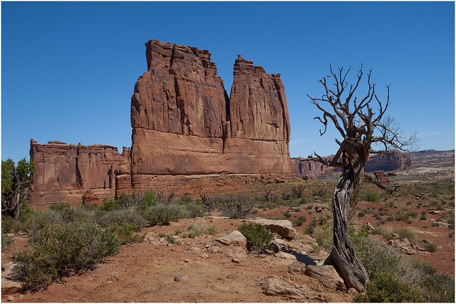 Arches National Park 9