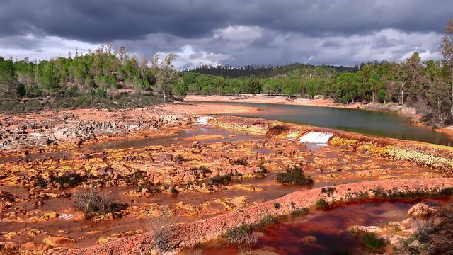 Salida a río Tinto 8-2-2020 (76)
