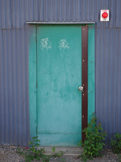 Green Door with Weeds