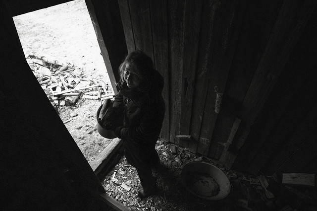 Random swedish: In the wood shed