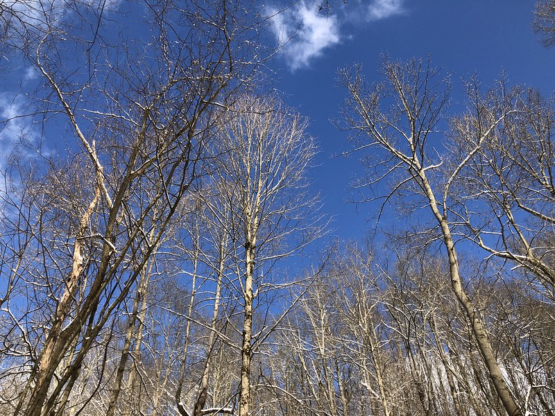 Blue Skies in the CVNP