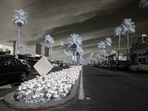 El Paseo, Palm Desert (0582)