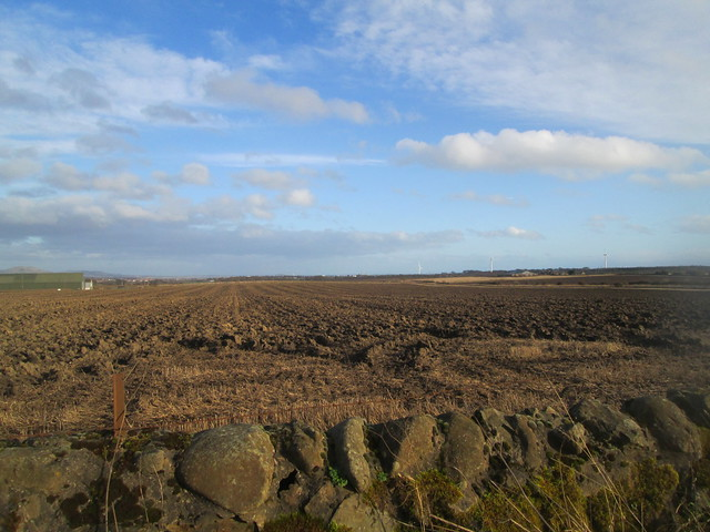 Fields, Fife