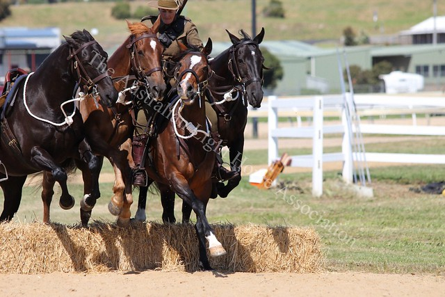 2018 ALHA and The Jericho Cup State Challenge