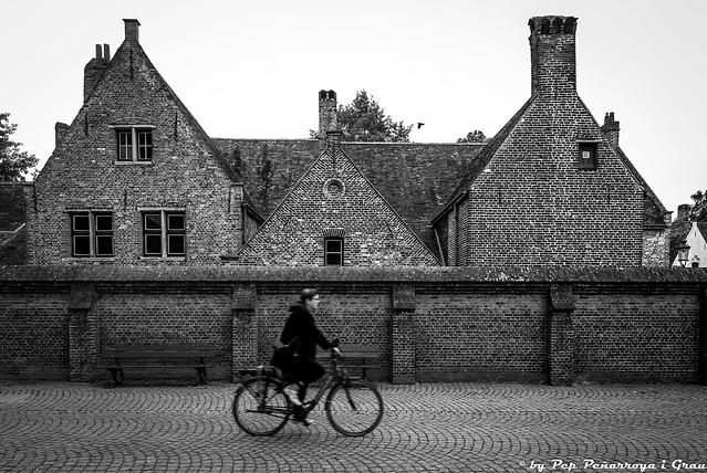Belgium...the essence... (15)