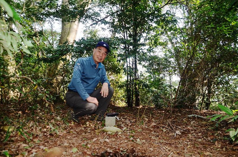 樟樹林冠字山(19)土地調查局圖根點