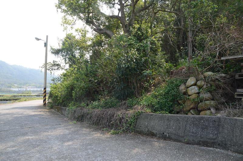 樟樹林圖根點登山口
