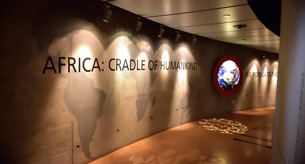 Cradle of Humankind | Mooistestedentrips.nl