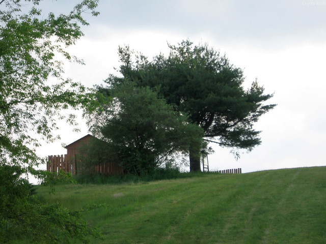 Bald Eagle Observatory