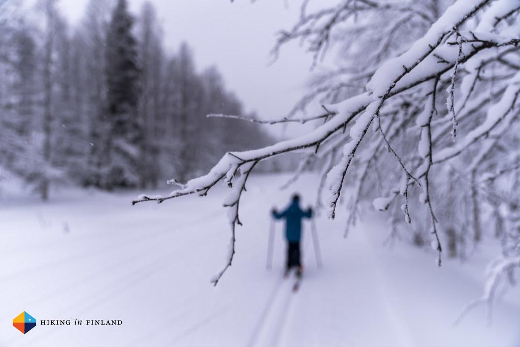 XC skiing V