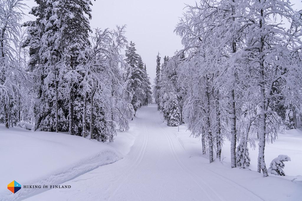 XC skiing maisemat
