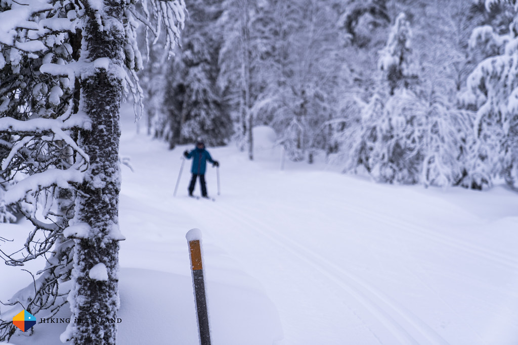 XC skiing 3