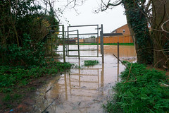 Footpath to Farrand Road flooded