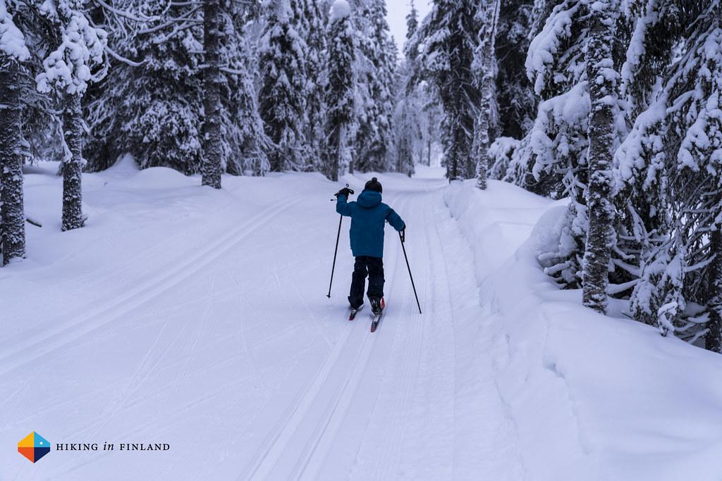 XC skiing 2