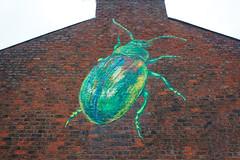Green Beetle Graffiti York
