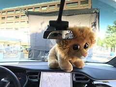 05.07.19 Kloten-Mobil