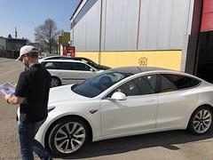 31.03.19 Model 3 Delivery Höri
