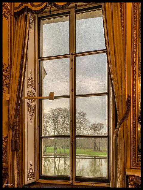 Telle une tapisserie...les arbres et leurs reflets .