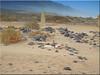 Fuerteventura 2020 - Cementerio de Cofete