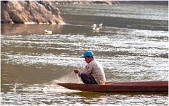 Fleuve Mékong, nord Laos-1251419