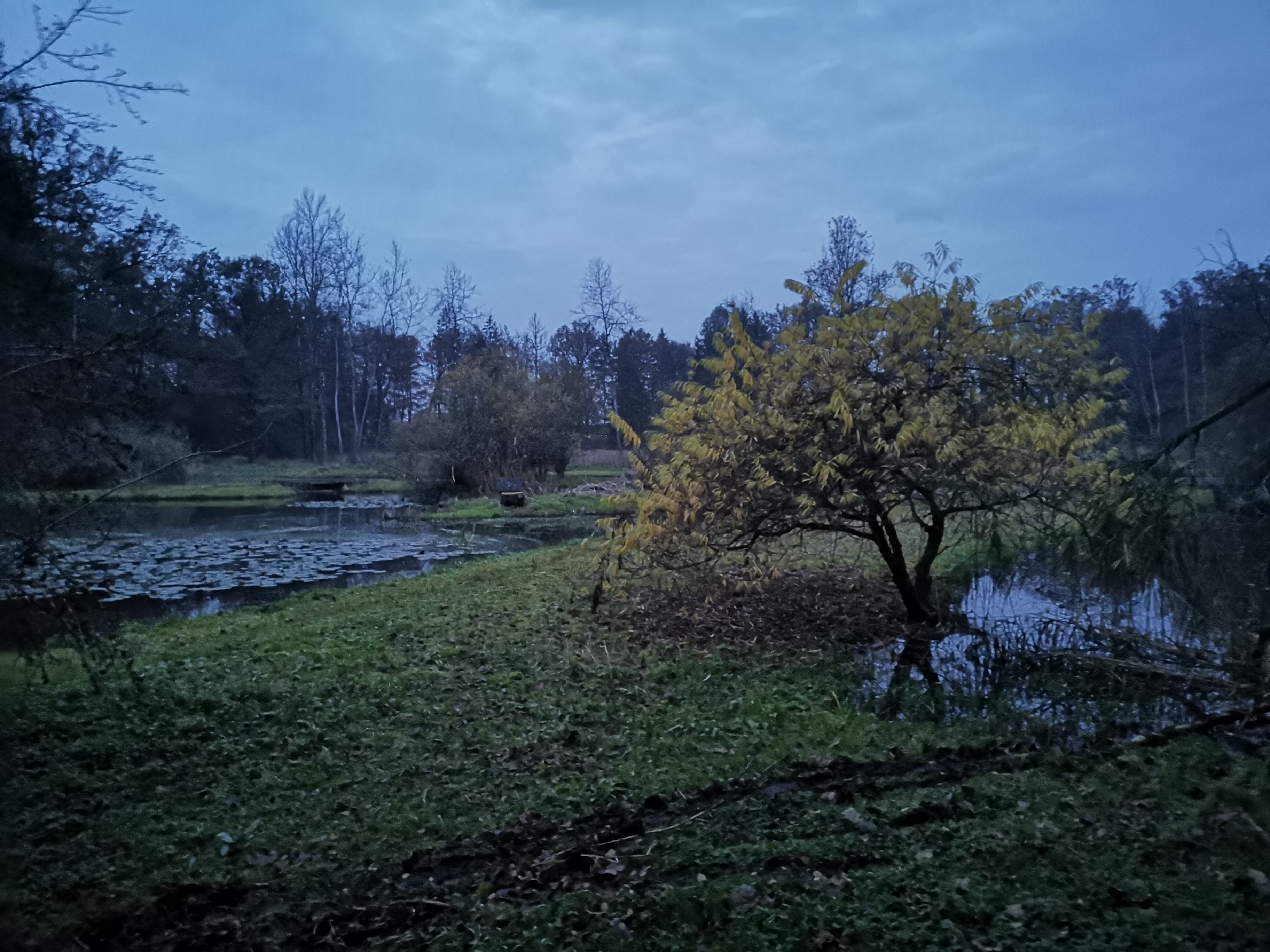 Blaue Stunde im Mösli