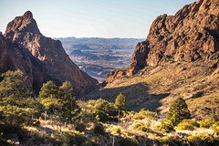 Late Afternoon, Chisos Mountains