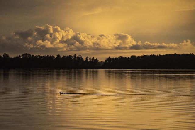 intense sunset on Lake Saint Helen, Michigan