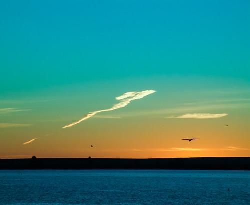 sepan co colorado aurora aurorareservoir sony f828 lightroom sunrise lake clouds birds water