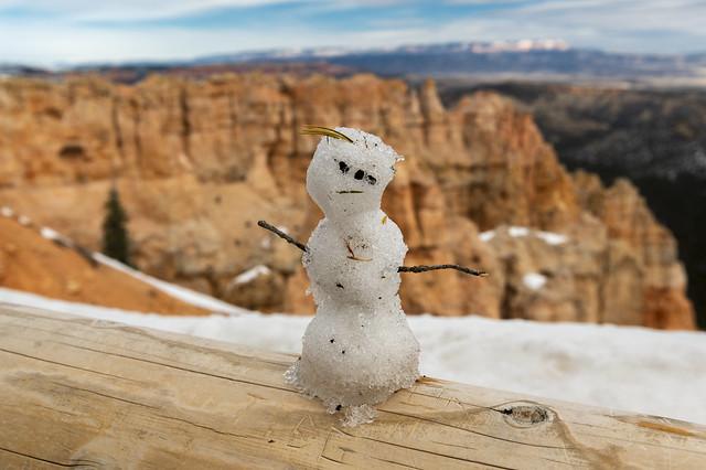 Snow Fella