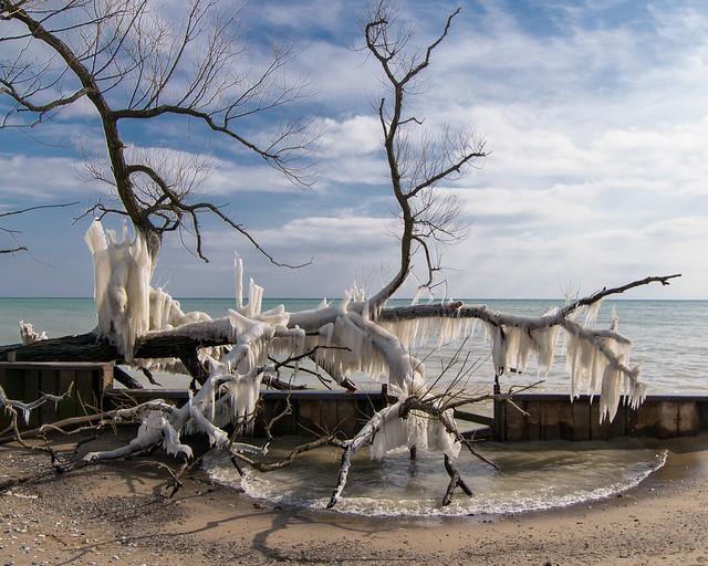 Lynde Shores Lake Ontario - 6008