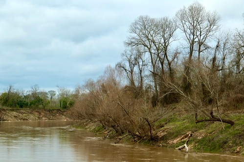 brazos river riverbank muddywater skyscape clouds landscape trees reflection rosenberg texas