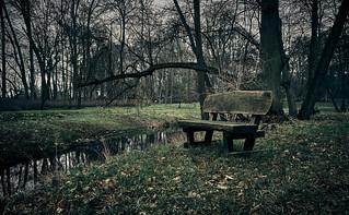Ansichten im Park