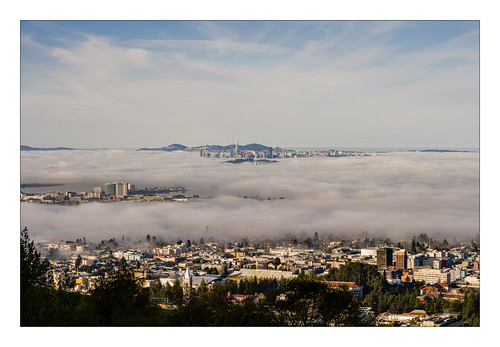sanfranciscobay sanfrancisco berkeley baybridge fog campanile salesforcetower