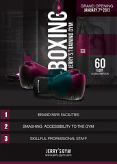 Flyer Boxing Training Gym