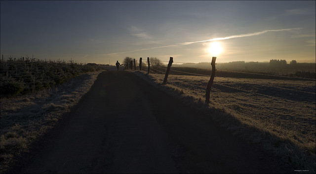 Morning walk ( Orchimont Belgium )